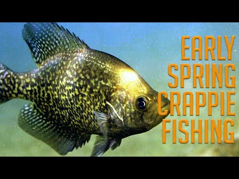 3 Early Spring Crappie Fishing Tips