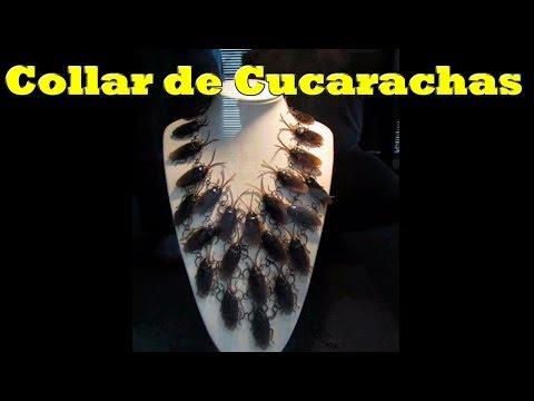Los peores regalos de san valent n youtube - Regalos de san valentin para el ...