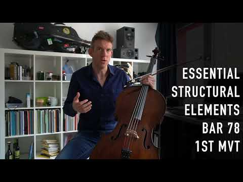 The Strad Masterclass: Johannes Moser on Brahms's Cello sonata no.1 op.38 (movements I,II)