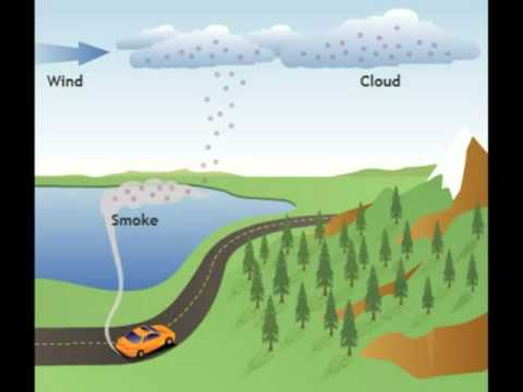 Causes and Effects of Acid Rain - YouTube