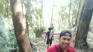 Akses jalan menuju permandian wisata alam iwoi pesua lalonggopi kec wolo kabupaten kolaka