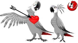 Gadająca papuga Grigorij -