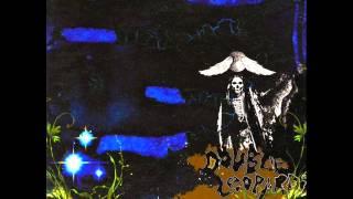 Double Leopards - The Secret Correspondence part II