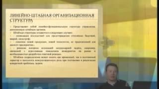 видео Матричная структура управления: достоинства и недостатки
