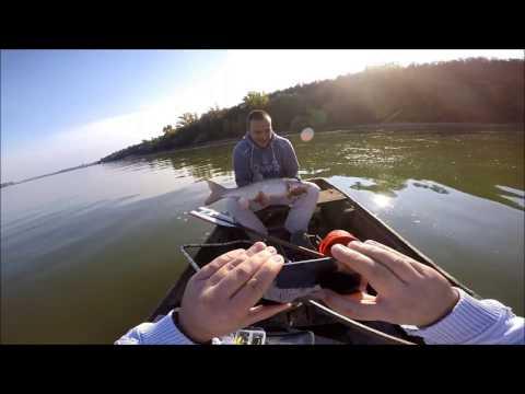 Ribolov na reci Dunav 2016, Zemun -  Fishing on Danube river 2016