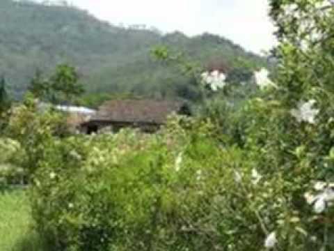 Bukit Berbunga - Uci Bing Slamet.mp4