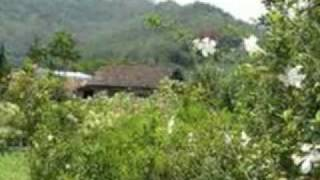 download video musik      Bukit Berbunga - Uci Bing Slamet.mp4