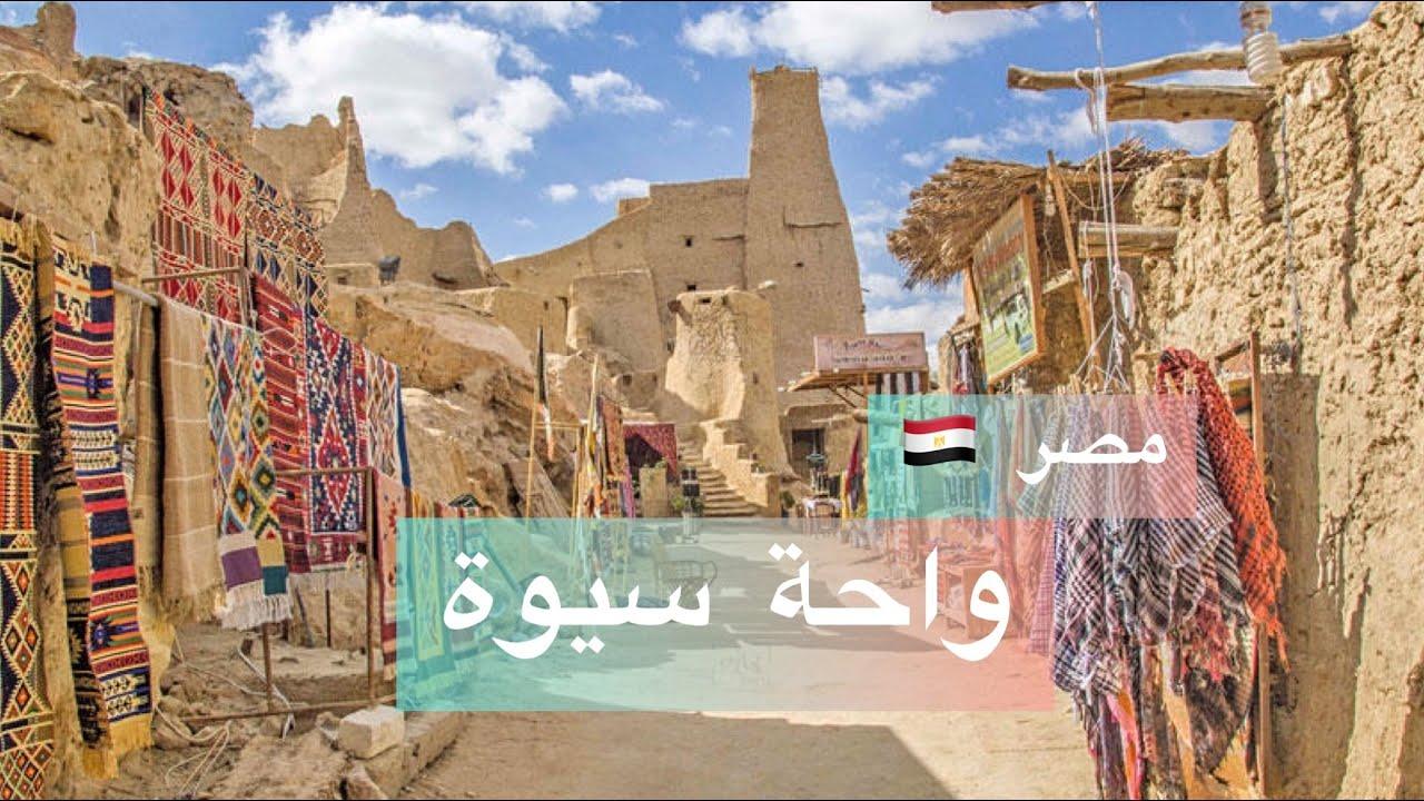 أمازيغ مصر - واحة سيوة - ، عادات ومقتنيات