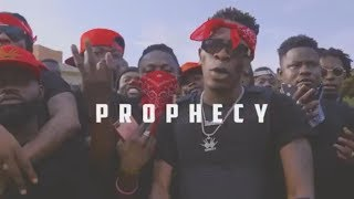 Shatta Wale - Prophecy (Teaser).mp3