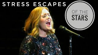 Stress Escapes of the STARS!!