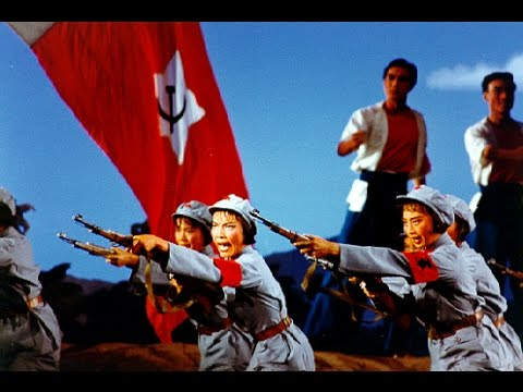 A Memoir of the Cultural Revolution: Consequences, Effects, Education, History (2001)