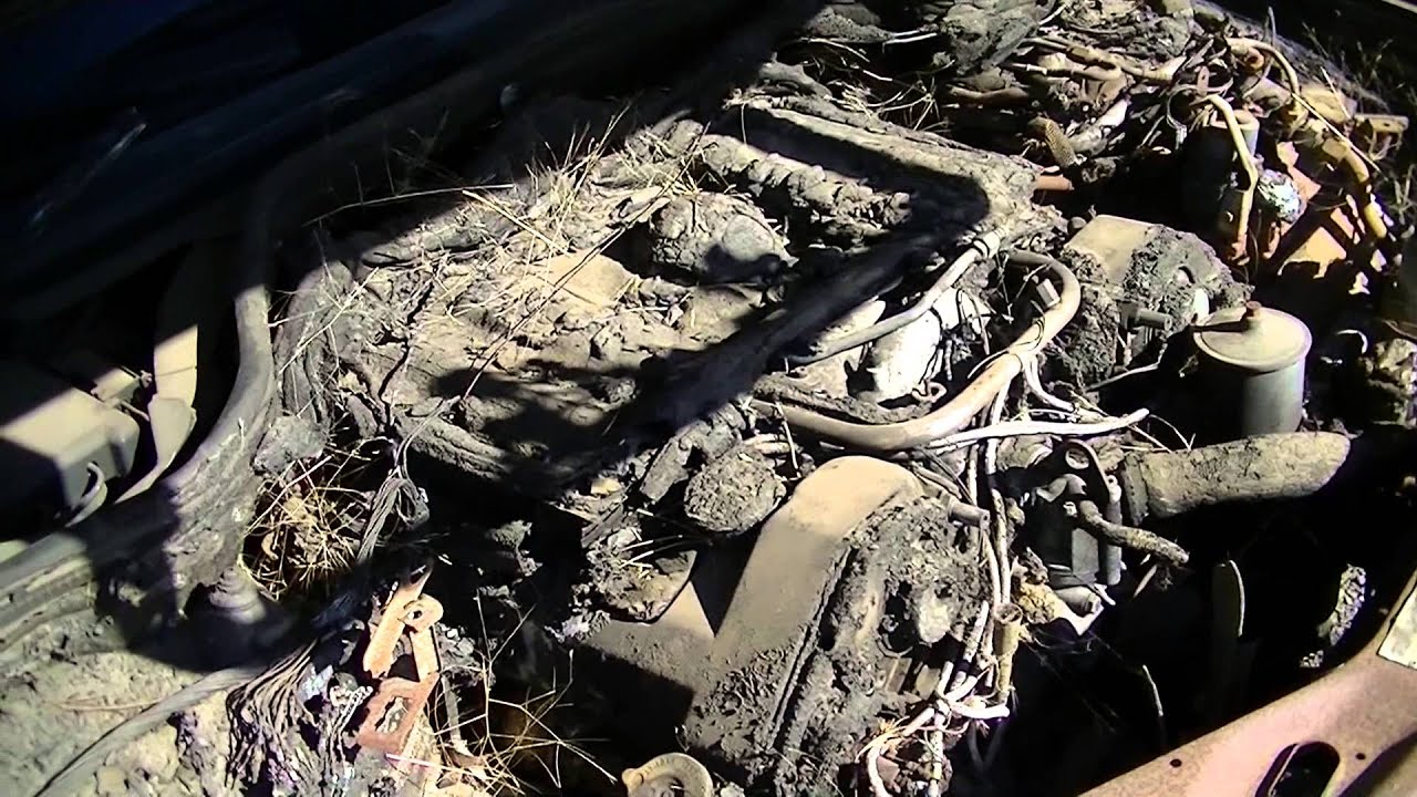 Mercedes Benz Engine Bay Fire Biodegradable Wiring Harness YouTube