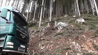 Forstunternehmen Hirtler - MAN gut geladen