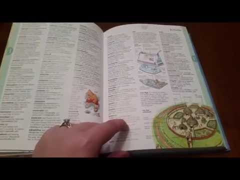 The Usborne Illustrated Dictionary