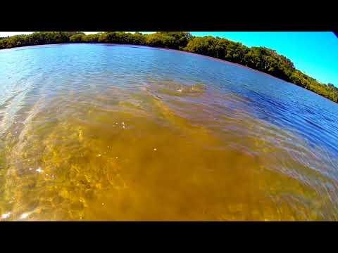 Flat Head Fishing - Ballina - NSW