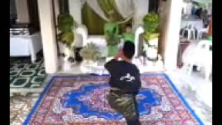 Gendang silat panji tok malim(lagu damak)