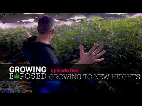 Growing Exposed Season 1 Episode 2 - Growing To New Heights