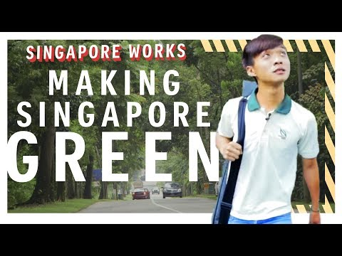 Caring for 2 million trees no easy feat | Singapore Works | The Straits Times