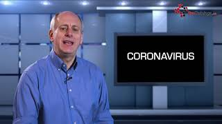 Cause of Coronavirus - How did Novel Coronavirus Start?