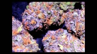 Purple Kush (90's Hip-Hop Instrumental)