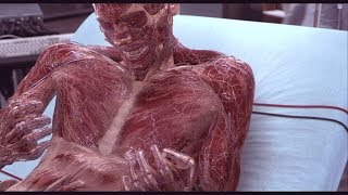 Hollow Man (2000) - First anatomically correct CGI human body model (HD)