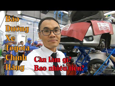 Bảo Dưỡng Xe Toyota | Phần 1: Bảo Dưỡng Xe Toyota Tốn Bao Nhiêu Tiền? Cần Làm Những Gì?