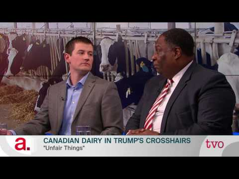 Canadian Dairy Farmers in Trump's Crosshairs