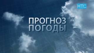 Прогноз погоды в Кыргызстане на 16.07.19 / НТС