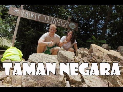 PASAPORTE A MALASIA! Capítulo 2: Taman Negara y Santuario de Elefantes