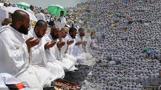 Hajj: Pilgrims pray in Arafat