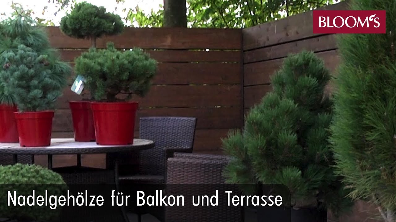 nadelgeh lze f r balkon und terrasse youtube. Black Bedroom Furniture Sets. Home Design Ideas