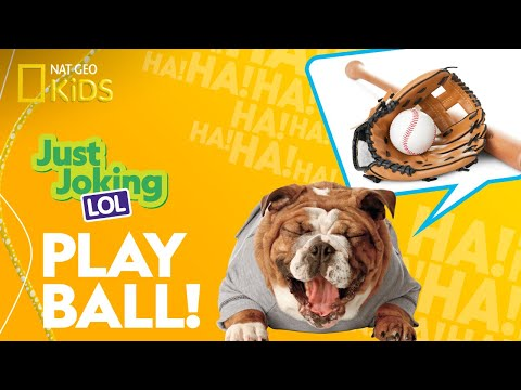 Play Ball! | Just Joking—LOL