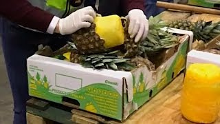 745 кг кокаина прятали в ананасах: находка в порту Лиссабона (новости)