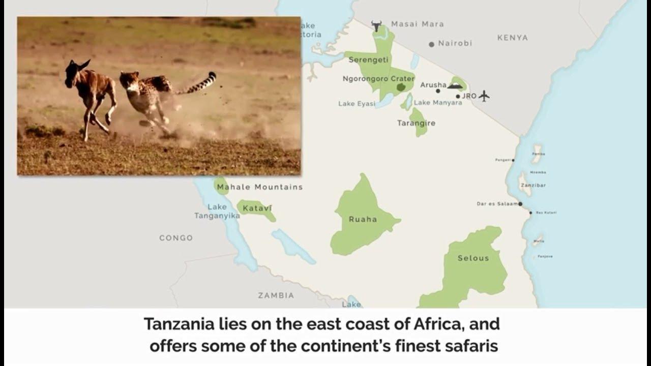 The ultimate guide to visiting Tanzania and Zanzibar