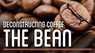 The Bean - Deconstructing Coffee  | How To Make Everything: Coffee