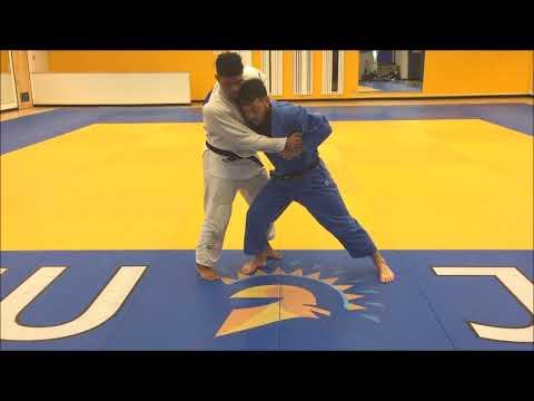 Dollamur Mats - Kosuke Tanaka Judo Hip Throw