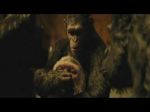 Winter's Death Scene | War Of The Planet Of The Apes (2017)