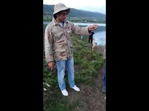 Такой рыбалки я еще не видел