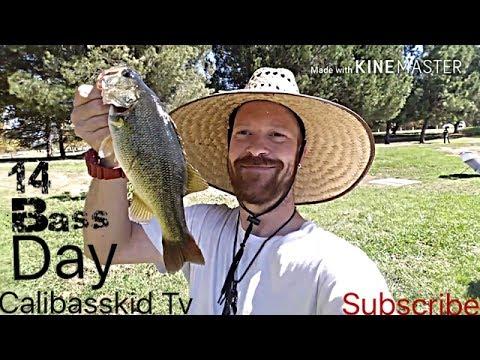 Calibasskid tv vlog 17 fishing lake balboa fishing with for Balboa lake fishing