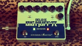 Electro Harmonix / Sovtek DELUXE BIG MUFF Pi demoed with humbuckers
