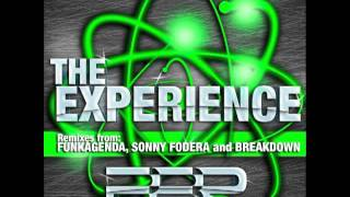 A-Divizion & MC Flipside - The Experience (Breakdown Remix)