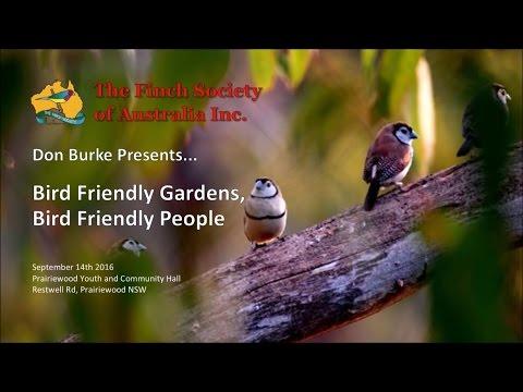 Bird Friendly Gardens, Bird Friendly People - Don Burke