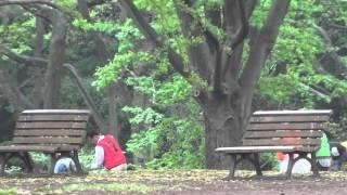 МУСОР в Токио Японии / Garbage in Tokyo Japan