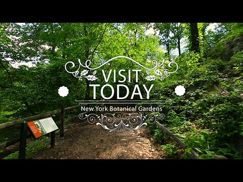 Botanical Gardens of New York City