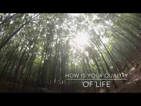 What is Quality Of Life - How does it affect you
