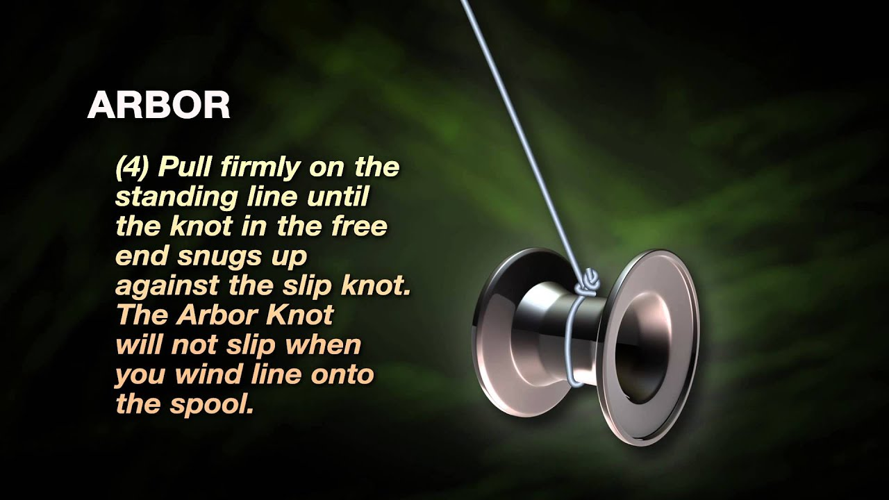 How To Tie A Spiderwire Arbor Knot Youtube