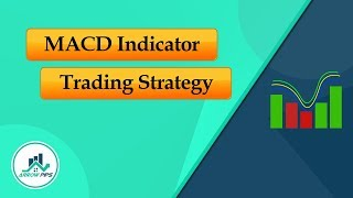 How to implement MACD Indicator Strategy in Forex Trading?