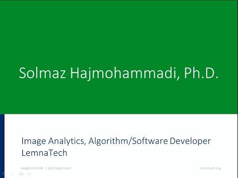 Solmaz Hajmohammadi, Ph.D., image analytics, algorithm/software developer, LemnaTech