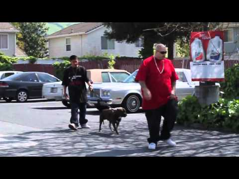 MUSIC VIDEO   STAYS ON THE BLOCK FT  LIL CONER & BIG OSO LOC