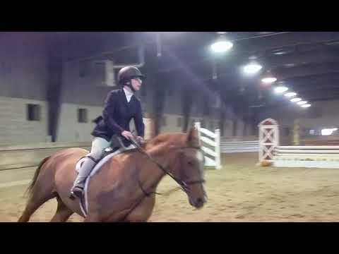 Kenz and Bailey 2nd round over fences